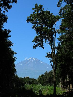 富士山ワーク2015