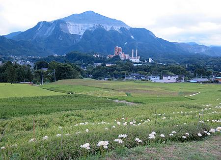 昔の武甲山