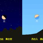 今日は下弦の月(Half Moon)