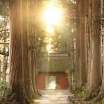 玄冬の戸隠 ― 神聖なる時空の交叉する聖地