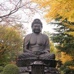 三大大仏の一つ、東京大仏に行ってきた